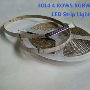 3014 RGBW 240LEDs/M 4 Rows LED Strip Light pictures & photos