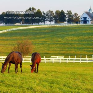 PVC Fence for Horse Ranch pictures & photos