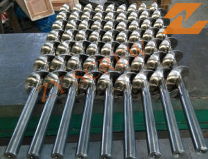 Stainless Screw and Barrel for Bulking Food Machinery pictures & photos