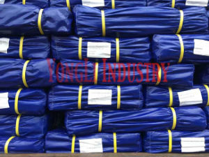 Tarpaulin /Roll Tarpaulin / PE Roll pictures & photos