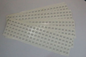 Pirnted Paper Adhesive Sticker PVC Self-Adhesive Label (Z036) pictures & photos