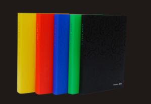 Display Book (P8810)