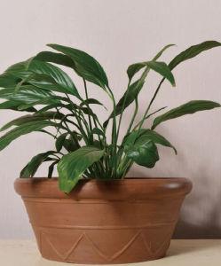 Recycled Plastic Flower Pot-10EDR30