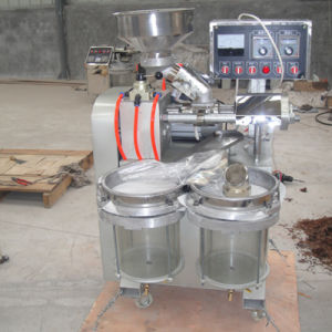 New Design Household Sesame Oil Press pictures & photos
