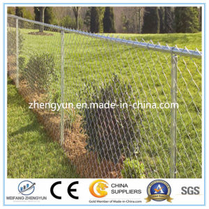 Chain Link Fence (2017 hot sale ISO 9001 anping Factory) pictures & photos