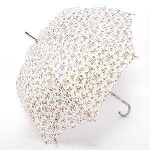 Straight Umbrella for Lady (BR-ST-172) pictures & photos
