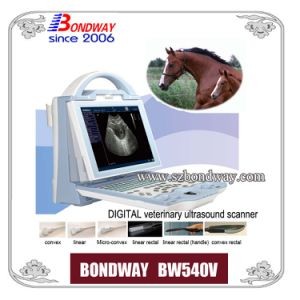 Veterinary Ultrasound -for Imaging Horse, Cow, Sheep, Goat, Pig, Cat, Dog pictures & photos