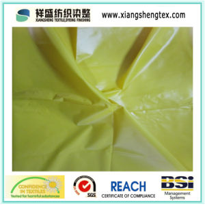 Ultrathin Nylon Taffeta Fabric with Oil Cire pictures & photos