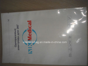 China Factory Wholesale Various Printed Metalize Foil Bag pictures & photos