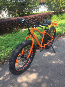 American Style Fat Tire Electric Mountain Bicycle 500W 48V pictures & photos