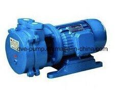 Oil Transformer Liquid Ring Vacuum Drying Pump pictures & photos