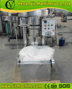 Hydraulic Oil Press, Sesame Oil Press, Cold Oil Press, Walnut Oil Press pictures & photos