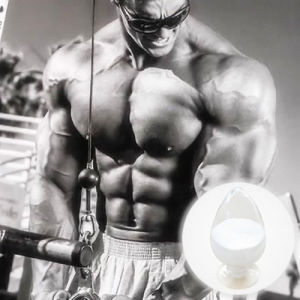 New Sarms Rad 140 CAS: 118237-47-0 Mass Muscle Growth Rad140 pictures & photos