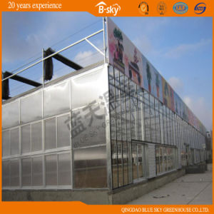 Multi-Span Glass Greenhouse with Long Life-Span pictures & photos
