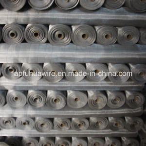 Popular Aluminium Alloy Window Screen (factory) pictures & photos