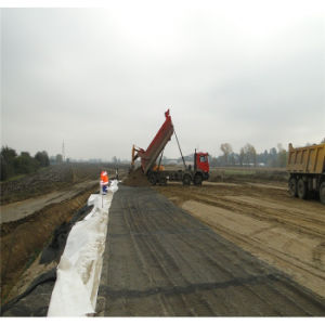 Single Axle Rigid Reinforcements Geogrids pictures & photos