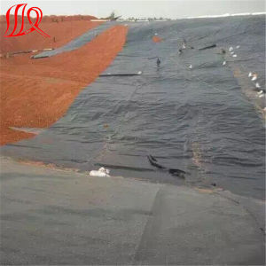 Fish Farm Pond Liner HDPE Geomembrane for Waterproof pictures & photos