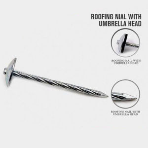 Hot Selling Nail with Big Heavy Head with Nice Price pictures & photos
