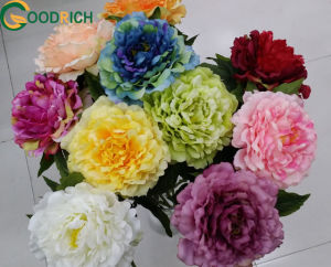 High Quality Realistic Peony for Decoration pictures & photos