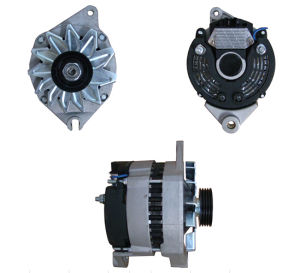 12V 70A Alternator for Citroen Lester 22262 A13n183 pictures & photos
