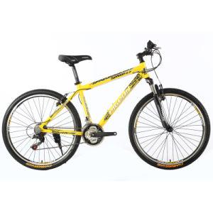 "Cheap 24""/26"" Steel Mountain Bike 18sp Bicicleta De Montañ a (FP-MTB-ST046) pictures & photos"