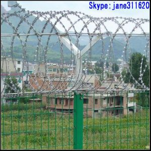 High Quality Razor Barbed Wire Mesh From Guangzhou Supply pictures & photos