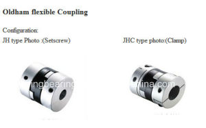 China Supplier Oldham Coupling Drawing Rotex Coupling Flexible Coupler pictures & photos