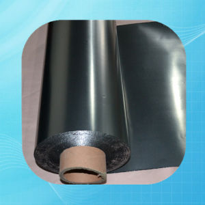 High Thermal Conductivity Expanded Flexible Sealing Graphite Paper pictures & photos