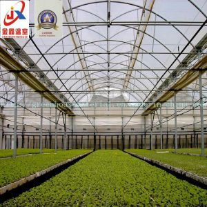 Plastic Film Greenhouse for Agriculture pictures & photos