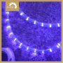 High Quality Lights 120v led Rope Lighting pictures & photos