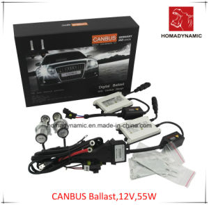 12V 55W Canbus Ballast HID Xenon Kit with 2 Years Warranty, Quality HID Kit White pictures & photos
