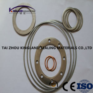 (KLG422) Corrugated Double Jacketed Gasket pictures & photos