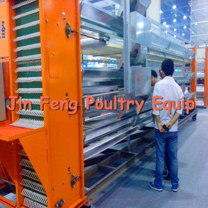 Automatic Layer Chicken Cage (3-5 tiers, factory price) pictures & photos