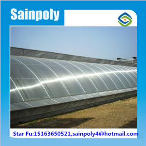Galvanized Steel Solar Greenhouse for Sale pictures & photos