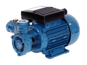 SKF1 Water Pump pictures & photos