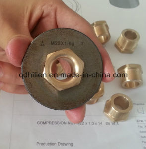 Brass Pipe Joint pictures & photos