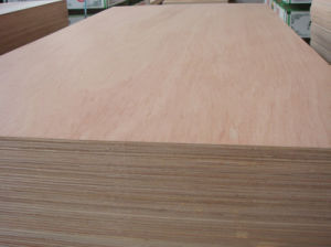 Bb/Cc Grade Hardwood Commercial Plywood and Poplar Commercial Plywood and Commercial Plywood pictures & photos