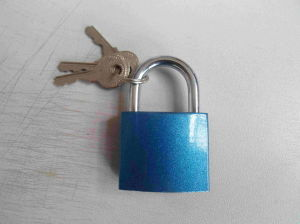 Top Security Blue Color Painted Door Padlock Normal Key