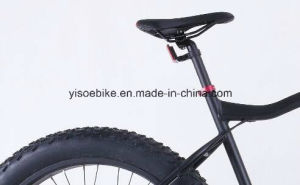 "Most Popular 29"" Electric Sport Mountain Bike E-MTB Bike pictures & photos"