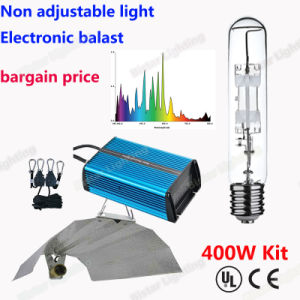 Factory Direct Supply Wholesale Price Metal Halide Lamp 400W Plant Growing Lamp pictures & photos