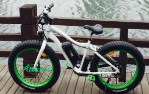 250W Snow Mountain Motorized Bicycle 26*4 Tyre High Speed Electric Motor E Bike pictures & photos