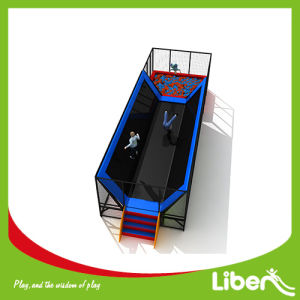 China Professional Manufacturer, Large Indoor Trampoline for Park pictures & photos