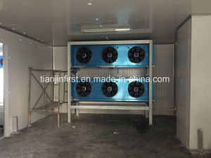 Good Quality Cold Room for Fruit and Vegetable with Bitzer Compressor pictures & photos