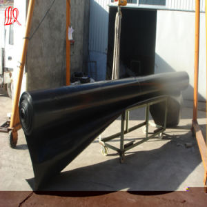 1.2mm HDPE Geomembrane Price pictures & photos