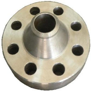 High Quality Standard Stainless Forged Flanges pictures & photos
