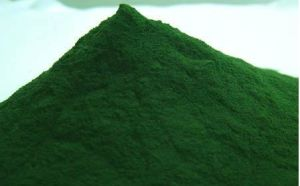 Spirulina Powder pictures & photos