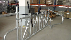 Hot Dipped Galvanised Cow Head Gate pictures & photos
