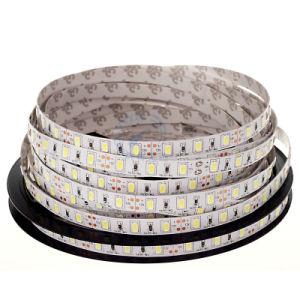 5050 SMD LED Strip LED Light LED pictures & photos