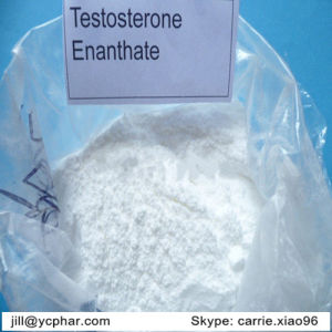 Testosterone Enanthate Steroid Testosterone Enanthate for Muscle Building