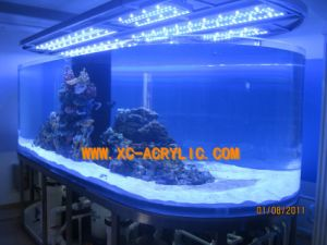 Aquarium Products/Cylindrical Tank/Marine Fish Tank pictures & photos